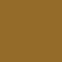 Ochre Brown High Gloss RAL8001